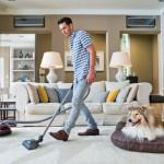 Elimina los olores y los pelos de las mascotas de tu hogar con 4 el aspirador Cat&Dog de Miele